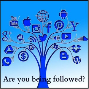 Qinfusion Social Media